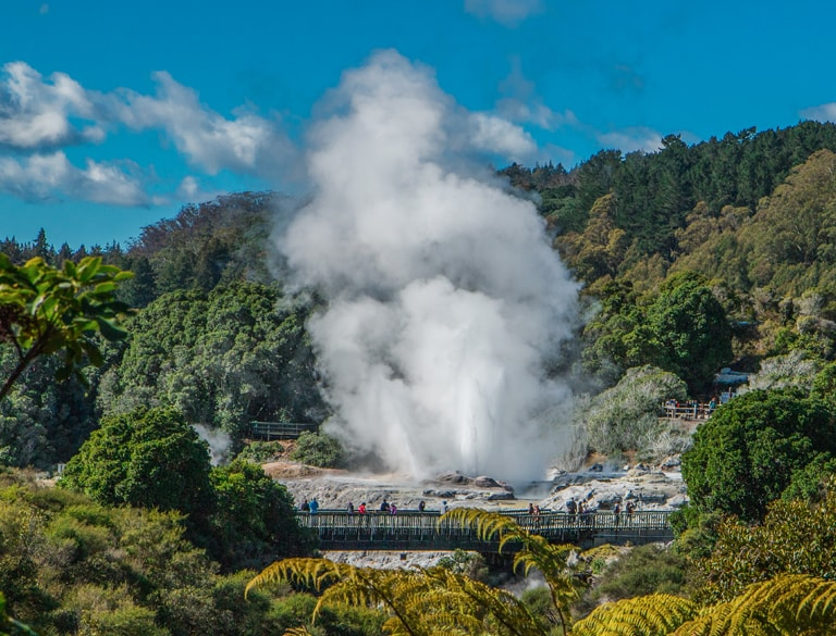 Te Puia cultural and geothermal experience